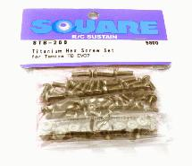 Square R/C Titanium Hex Screw Set (Tamiya TB EVO7)